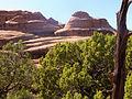 49 Devils Garden Trail 29 (4119895624).jpg