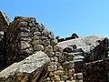 60 Stone Machu Picchu Peru 2580 (14979026269).jpg