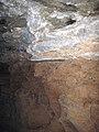 66A Limestone wall & sediment fill, Collins Avenue 1 (8324766293).jpg