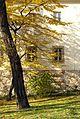 7348vik Planty krakowskie. Foto Barbara Maliszewska.jpg