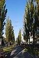 80-391-5006 бульвар шевченка.jpg