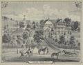 A. H. Taylor's Central Valley, Stock Farm - Orange Co. N.Y. NYPL1652187.tiff