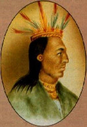 Muisca rulers - Image: AQUIMINZAQUE