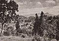 A Pitoresca Cidade Paranaense de Joinville e Imponente Serra Que Que Lhe Fica Próxima - 1, Acervo do Museu Paulista da USP (cropped).jpg