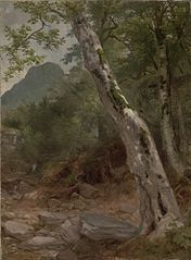A Sycamore Tree, Plaaterkill Clove