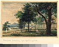A Treatise on the Theory and Practice of Landscape Gardening MET figure 171R1 24H.jpg