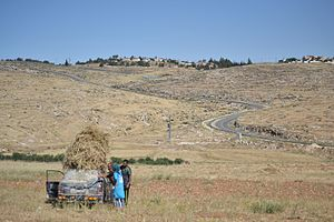 Mount Hebron - South Hebron Hills