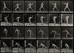 A javelin thrower. Photogravure after Eadweard Muybridge, 18 Wellcome V0048682.jpg
