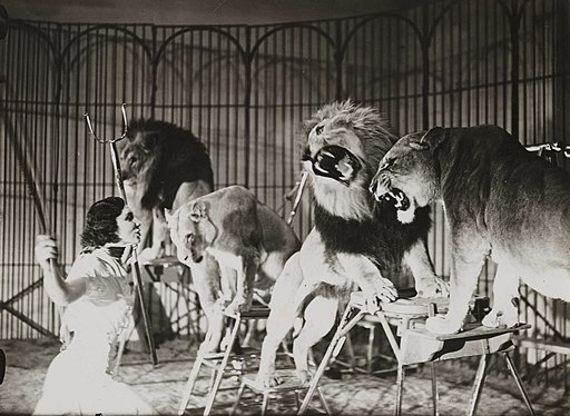 A lion tamer at Bertram Mills Touring Circus, Ascot (3588573761)