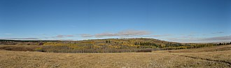 Cypress Hills Interprovincial Park - A panorama of Cypress Hills