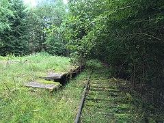 Abandoned train station Horní Slavkov zastávka.jpg