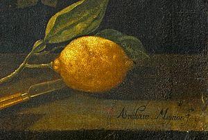 Abraham Mignon - Mignon's signature - Abraham Mignon Fecit.