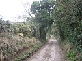Access road to Whiting PoultryFarm - geograph.org.uk - 2303497.jpg