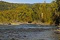Adams River - Shuswap, BC - panoramio.jpg