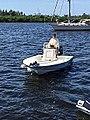 Admirals Pelican Bay 2015 (14) (21877174313).jpg