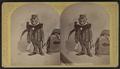 "Affable Adirondacks Agent, 1880. - ""Hop"", by Stoddard, Seneca Ray, 1844-1917 , 1844-1917.png"