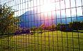Agios Nikolaos Park, mountain Vermion.jpg