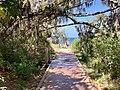 Alexandra Avenue beach, Broadbeach, Queensland 05.jpg