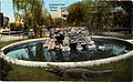 Alligator Pool, El Paso, Texas.jpg