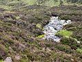 Allt a Choire Uidhre - geograph.org.uk - 20388.jpg