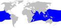 Alopias pelagicus distmap.png