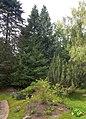 Alphems arboretum utanför Floby 2694.jpg