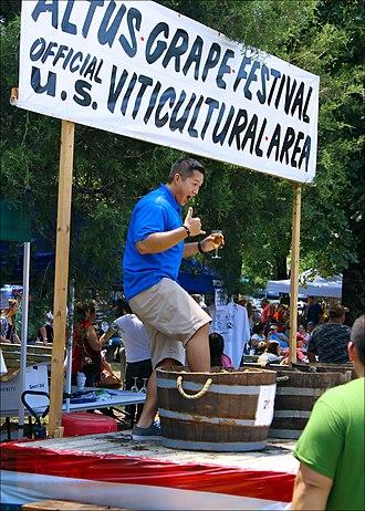 Altus, Arkansas - Action from the 2013 Altus Grape Festival