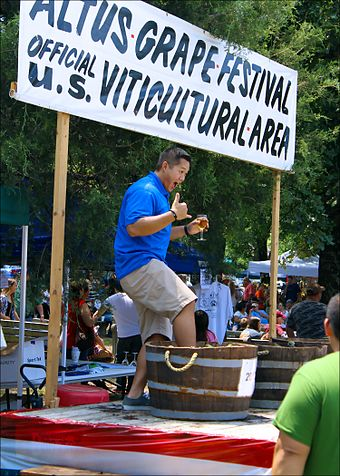 A festival attendee participates in traditional grape stomping at the 2013 Altus Grape Festival Altus Grape Festival 002.jpg