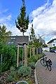 Am alten Sportplatz (Hilden). Reader-05.jpg