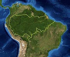 Distribuição da espécie na América do Sul (em destaque [nota 1])