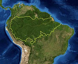 Map of the Amazon rainforest ecoregions as delineated by the WWF. Yellow line encloses the Amazon rainforest. National boundaries shown in black. Satellite image from NASA.