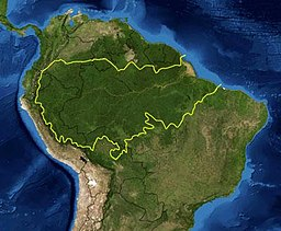 Map of the Amazon rainforest ecoregions as delineated by the WWF. Yellow line approximately encloses the Amazon drainage basin. National boundaries shown in black. Satellite image from NASA.