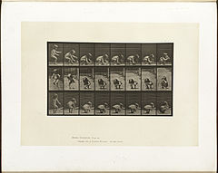 Animal locomotion. Plate 477 (Boston Public Library).jpg