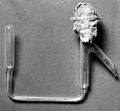 Apparatus used by M. Joloiot-Curie. Wellcome M0011468.jpg