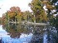 Autumn at Britten's Pond - geograph.org.uk - 602166.jpg