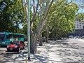 Avenida La Rábida Sur - Buenos Aires.jpg