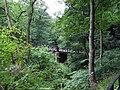 Avon gorge - geograph.org.uk - 903700.jpg