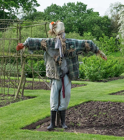 File:Baddesley Clinton Scarecrow.jpg