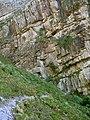 Balade dans la montagne (3332058158).jpg