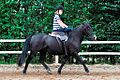 Balanced Riders position in a modern side saddle.jpg