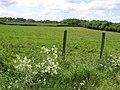 Ballygawley Townland - geograph.org.uk - 830626.jpg