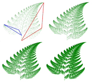 Barnsley fern - Fractal fern in four states of construction. Highlighted triangles show how the half of one leaflet is transformed to half of one whole leaf or frond.