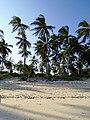Beatiful sandy beaches.jpg