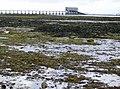Bembridge lifeboat station - geograph.org.uk - 471568.jpg