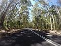 Benandarah NSW 2536, Australia - panoramio (10).jpg