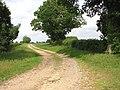 Bend in farm road - geograph.org.uk - 1347823.jpg