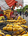 Benoa Bali Indonesia-Repair-of-a-fishing-net-01.jpg