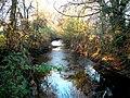 Beverley Brook by Palewell Common - geograph.org.uk - 2148213.jpg