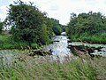 Bielby Arm, Pocklington Canal - geograph.org.uk - 871917.jpg
