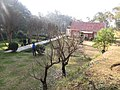 Bisankhunarayan, 44709, Nepal - panoramio.jpg